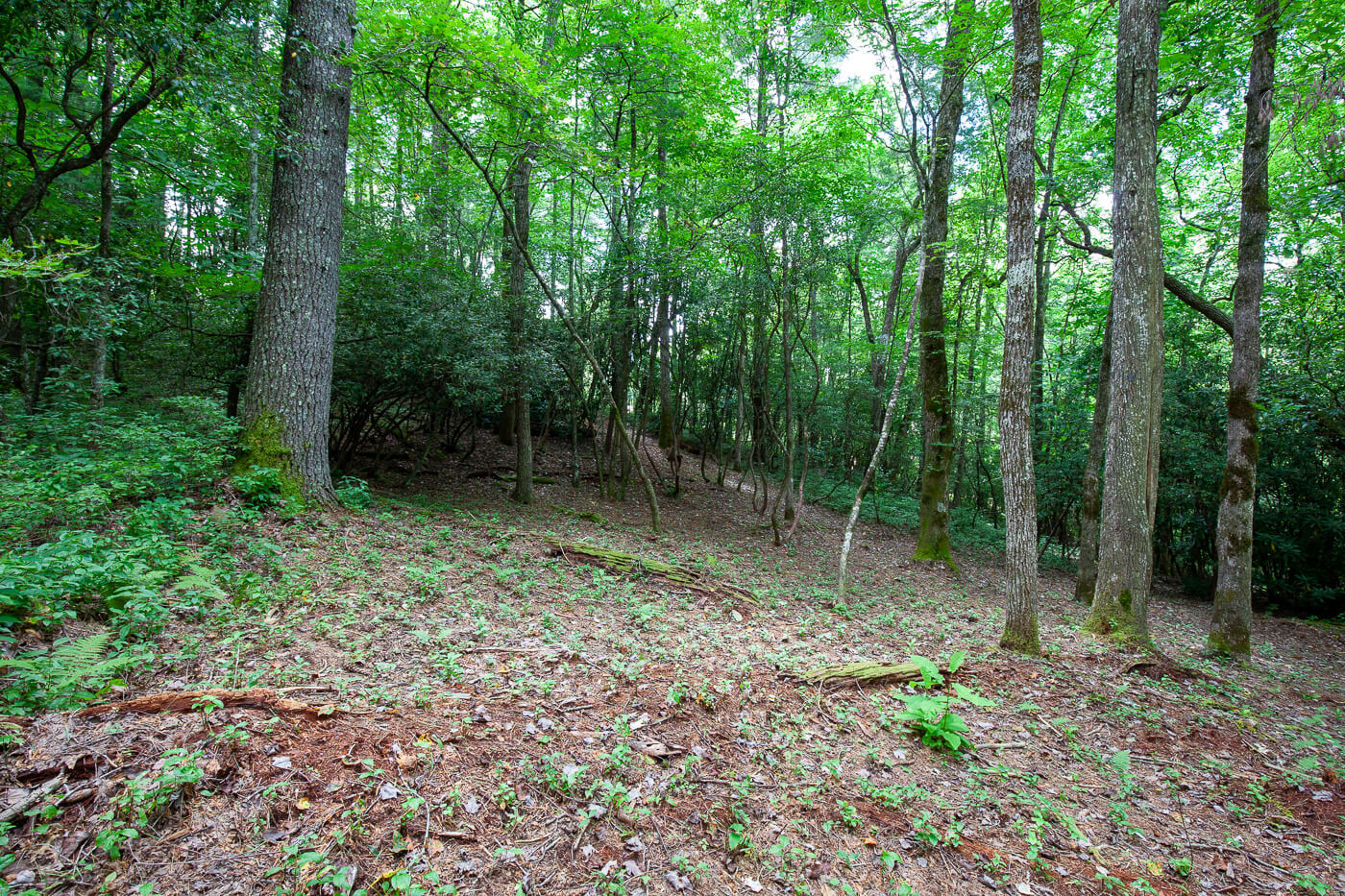 Cashiers_Real_Estate_creek_View-3
