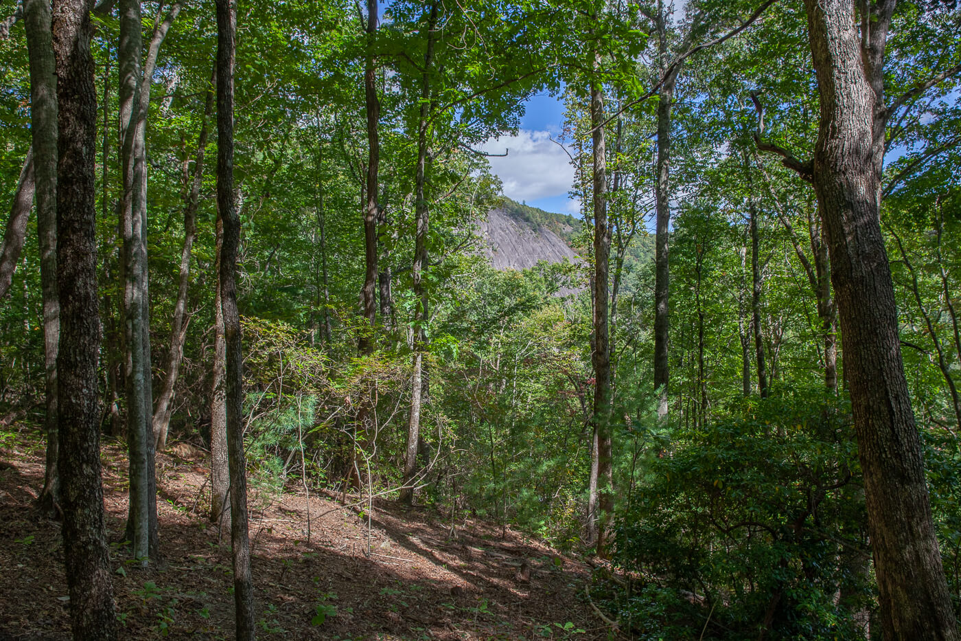 Cashiers_NC_Mountain_View_Real Estate-7