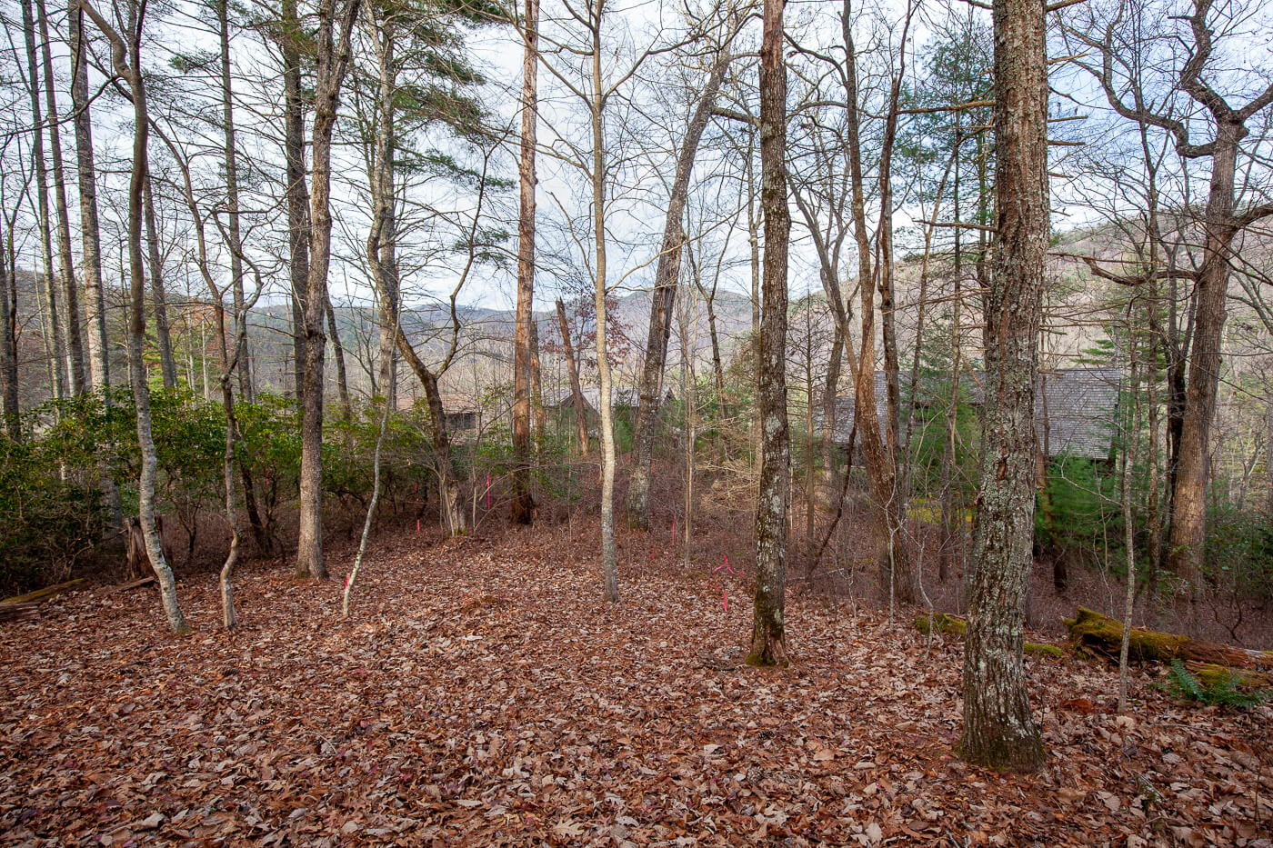Cashiers_Real_Estate_Mountain_view-C-2-2